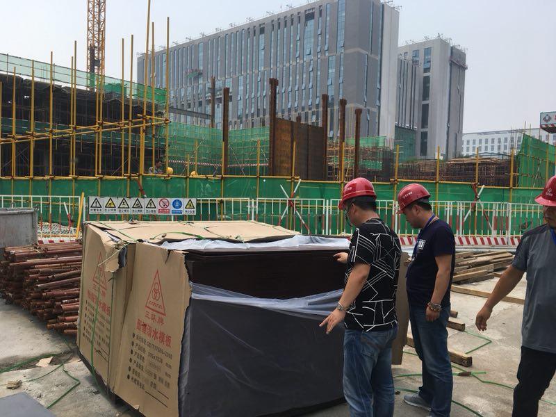北京城建中国科学院遥感与数字地球研究所项目——同新木业